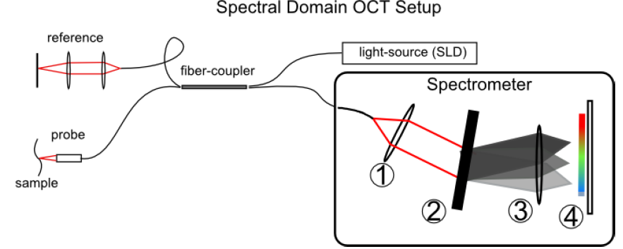 Spectral Domain Optical Coherence Tomography (OCT) Setup