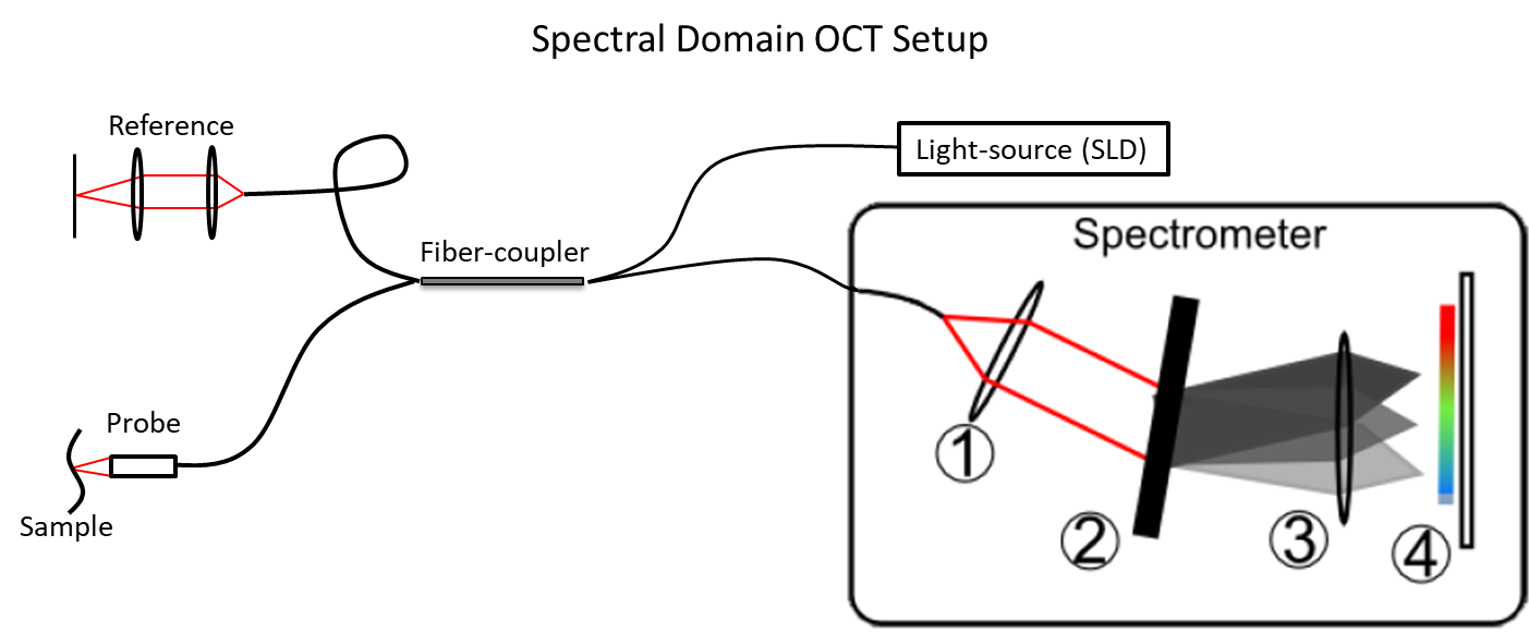 Spectral Domain Optical Coherence Tomography Setup