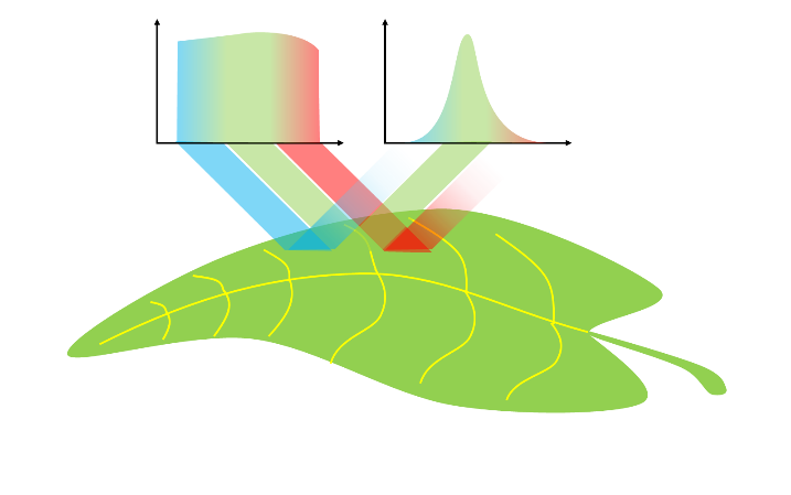 Illustration of the spectral content of light that is reflected off a leaf to illustrate how a precision agriculture sensors works