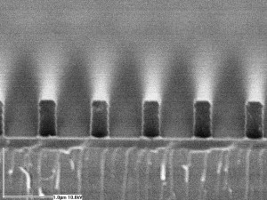 Grating SEM, Photoresist on SiO2, 1000 nm period